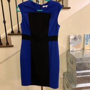 Calvin Klein Cobalt Blue/Black Dress Sz 8